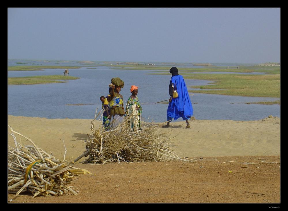 Appraiser on the Environment: The Case of Inner Niger Delta (3/4)